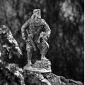 Скифский царь (460)