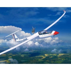 Gliderplane DUO DISCUS & engine (03961)
