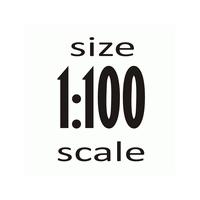 Масштаб 1:100