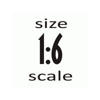 Масштаб 1:6