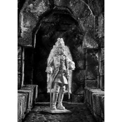 Офицер гренадеров Карла 12 (513)