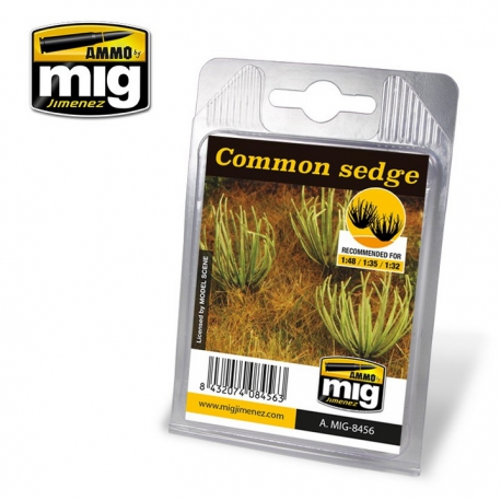 Ammo Mig COMMON SEDGE (AMIG8456)