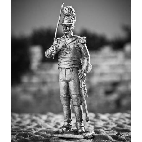 Württemberg Life-Head Officer of the Life Guards Horse Ranger Regiment, 1808 (728)